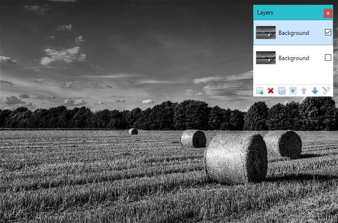 landscape1e.jpg