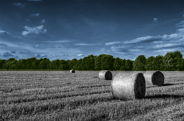landscapegreenblue.jpg